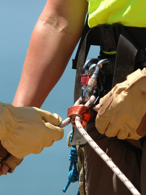 expert safety rigger harness